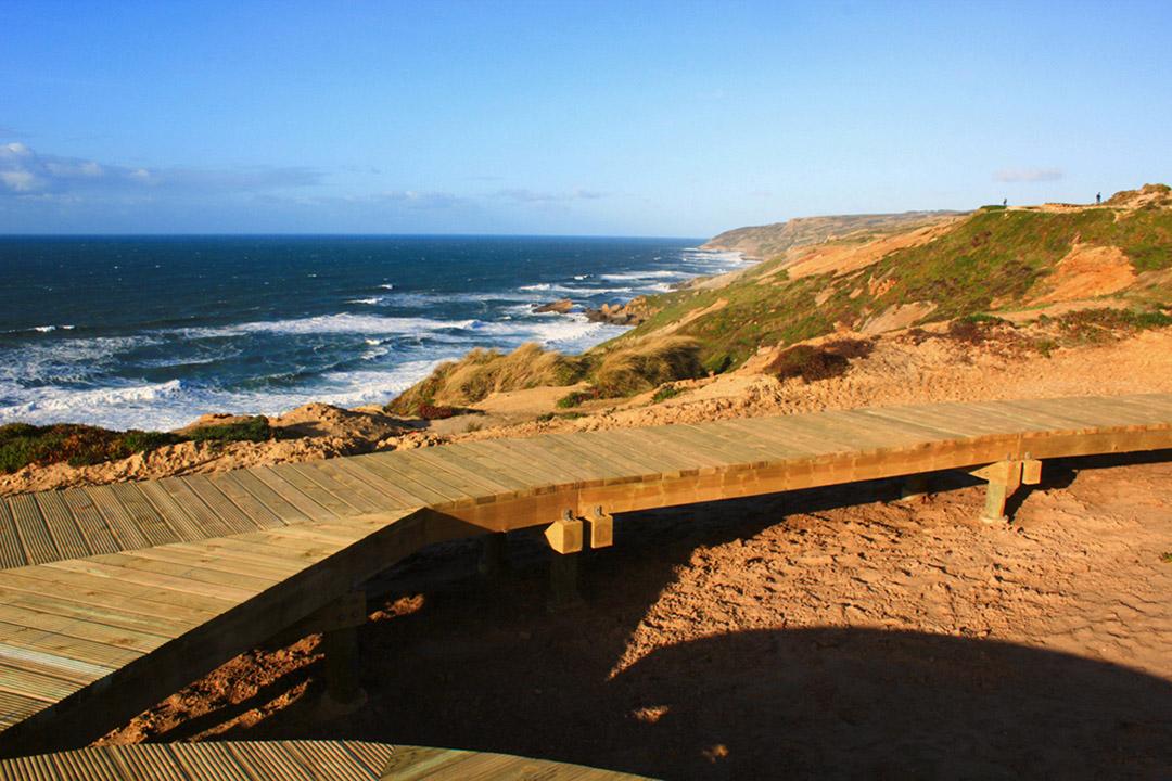 葡萄牙海滨沙丘及峭壁生态修复改造项目 (10)